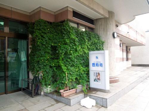 豊寿苑の正面玄関前はゴーヤの緑におおわれています